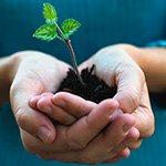 Экологические Инициативы