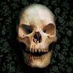 Аватар со страшным черепом, скачать картинку с черепом