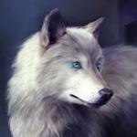 Красивая картинка с белым волком на аву