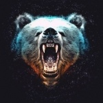 Голова медведя с широко открытой пастью