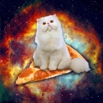 Кошка на куске пиццы на фоне космоса