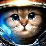 Картинка с котенькой в боевом котюме терранов. Скачать аватар с котом космонавтом-солдатом.