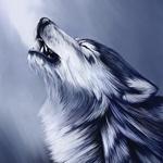 Картинка с воющим волком и паром из пасти. Скачать рисунок волка на морозе с поднятой головой.