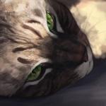 Рисунок кота лежащего на боку на полу