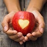 Яблоко с вырезанным сердцем в руках человека