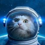 Кот в космосе в скафандре с подсветкой