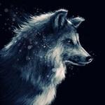 Животные | аватар
