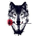 Волк с красной розой во рту