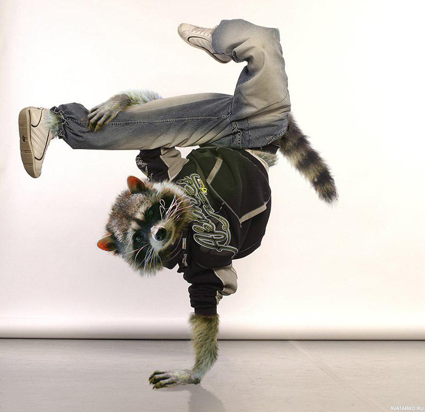 Один, прикольные картинки танца