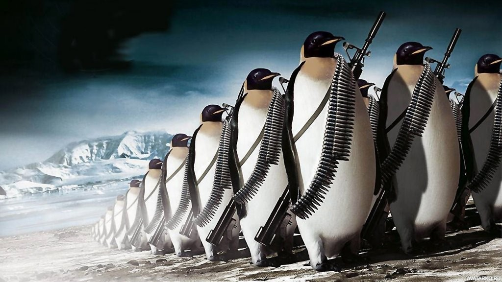 Минобразование предлагает украинским школьникам принять участие в исследовании Антарктиды и посчитать пингвинов - Цензор.НЕТ 8052