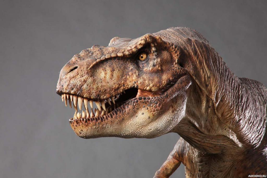 сильно плодотворно все картинки тираннозавра странно, старый