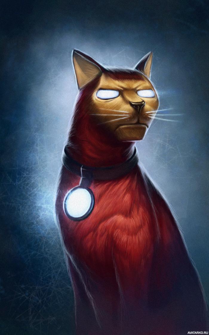 Картинка кота-железного человека