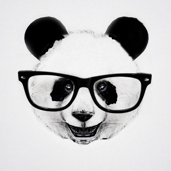 фото панды на аву
