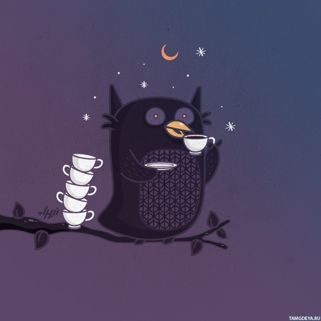 Кто спит днем тот читает ночью