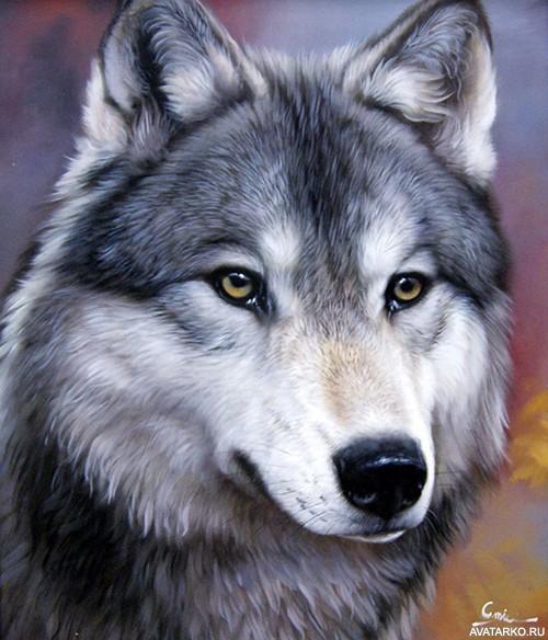 Арт волки