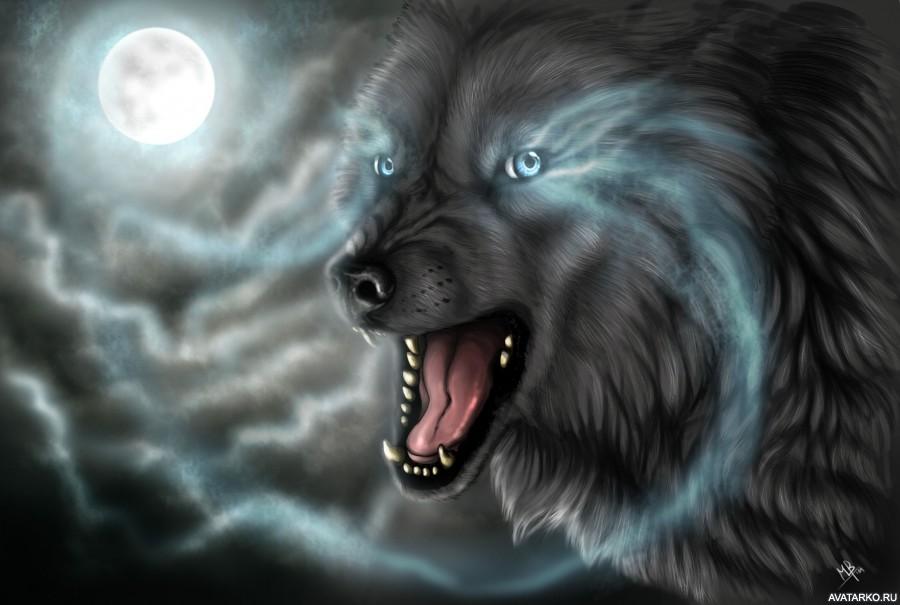Волки картинки на аву 7