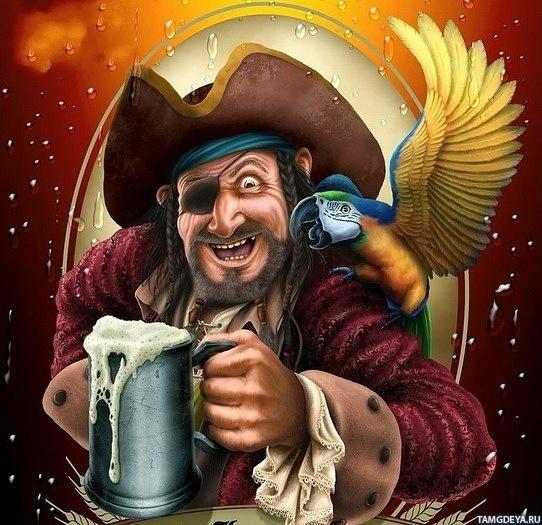 Картинка 542x525 | Весёлый пират с кружкой пива и попугаем на плече | Шляпа, Пираты, Попугай,   Аватарка пирата, фото