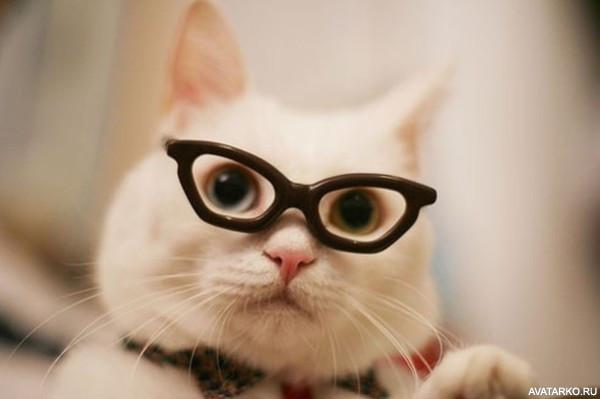 на аву в очках фото