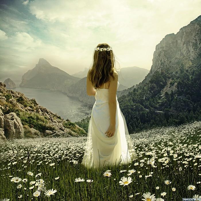 Шаблон юбилей, картинки девушка с ромашками со спины