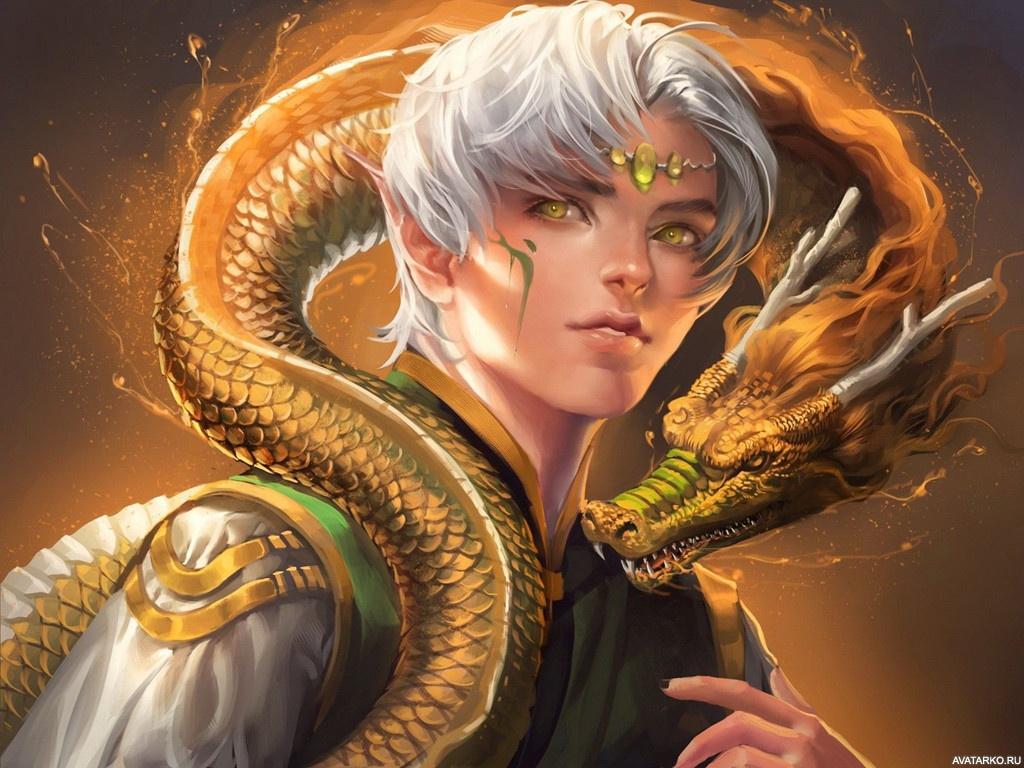 Фэнтези картинки эльфы и драконы любом случае