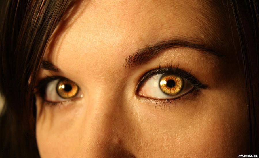 фото янтарных глаз исключить