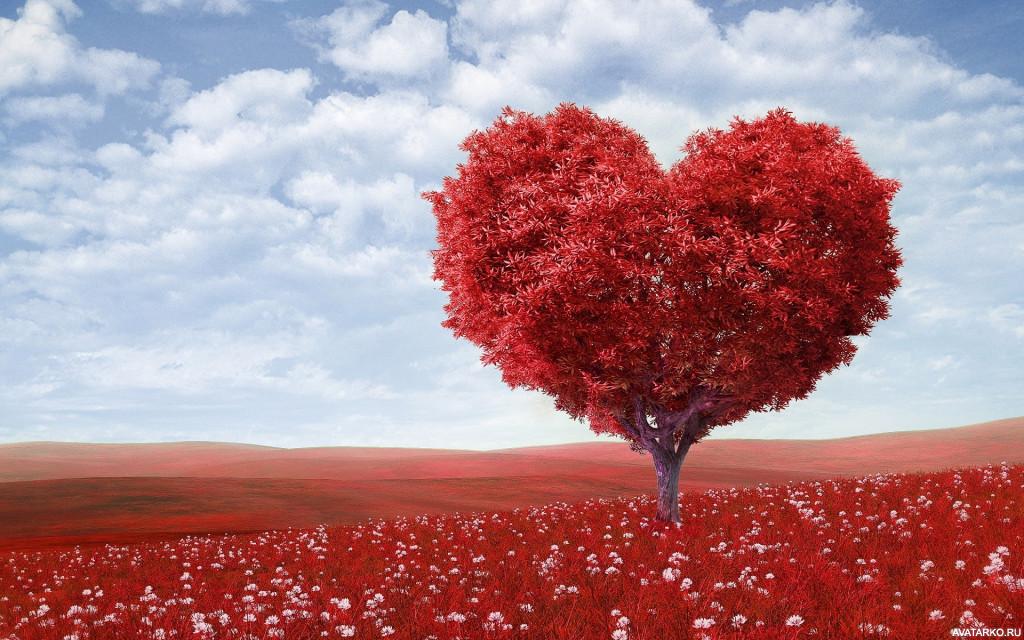 Дерево с красными листьями и кроной в форме сердца ...