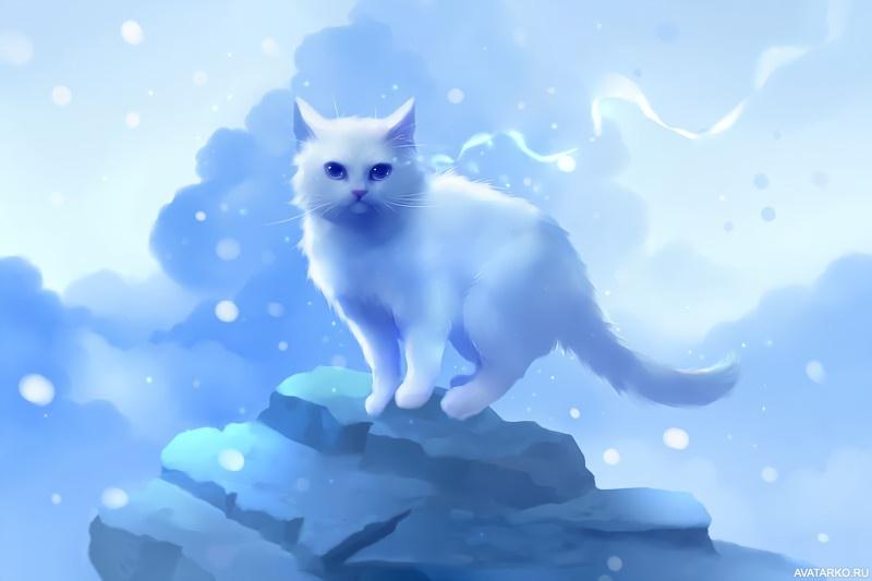 Картинки кошки рисунки красивые, картинки