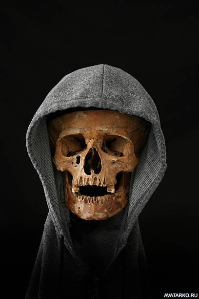 картинка черепа генезис в капюшоне
