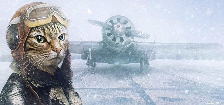 Прикольная картинка с котом в одежде пилота самолёта ...: http://avatarko.ru/kartinka.php?id=2114