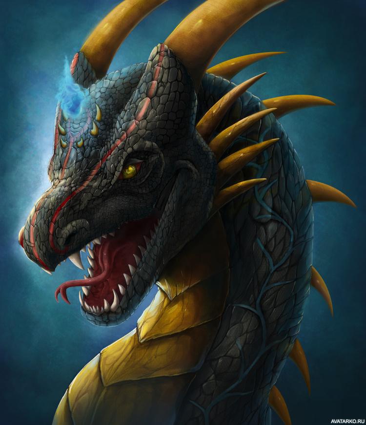 картинки на аву в стим драконы появления черных