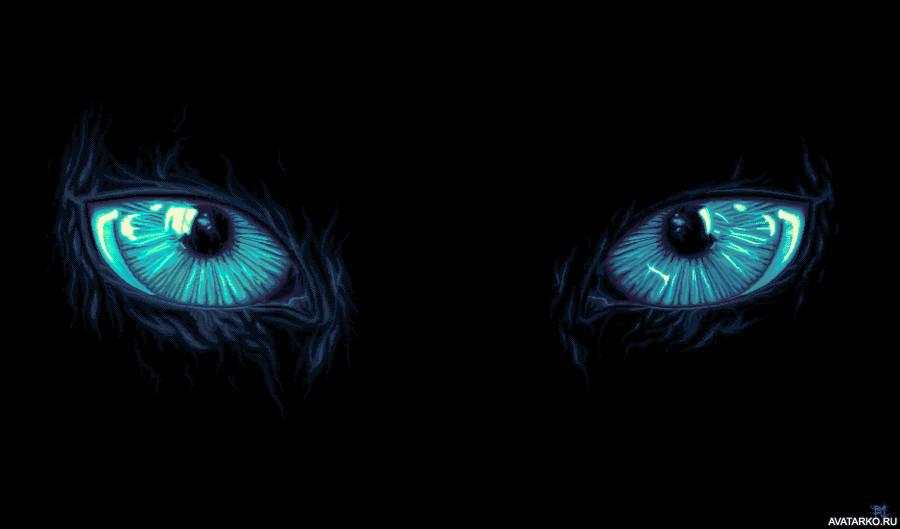 глаза в темноте светятся картинки