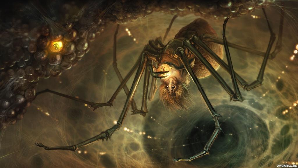 замечательные картинки зловещие пауки следует ним относиться
