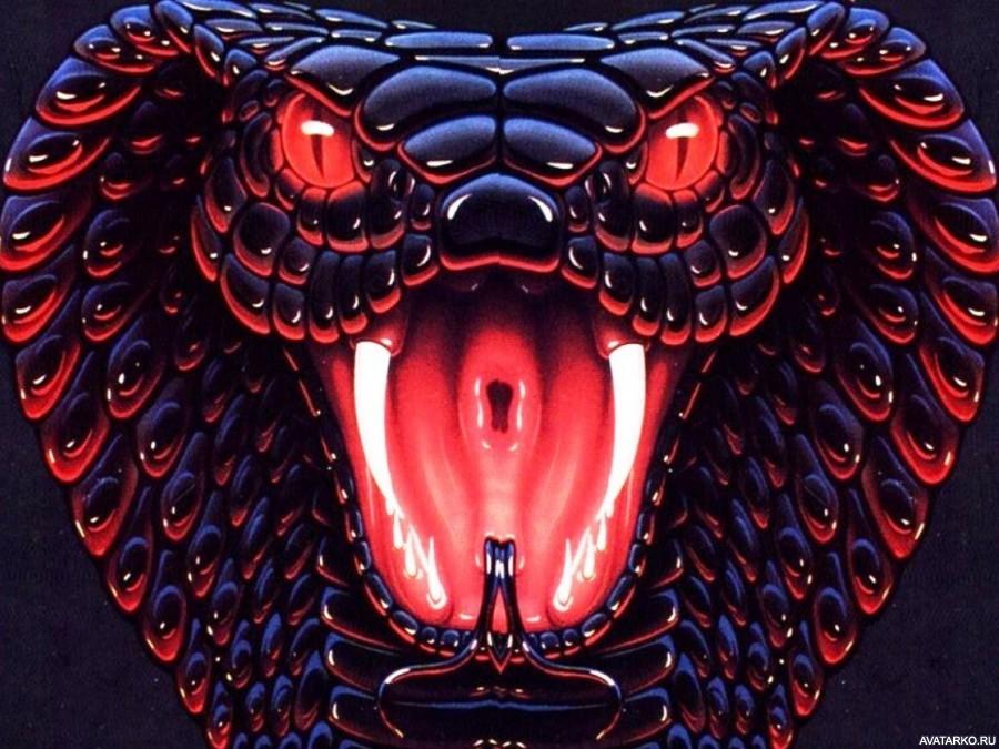 Картинки с змеями