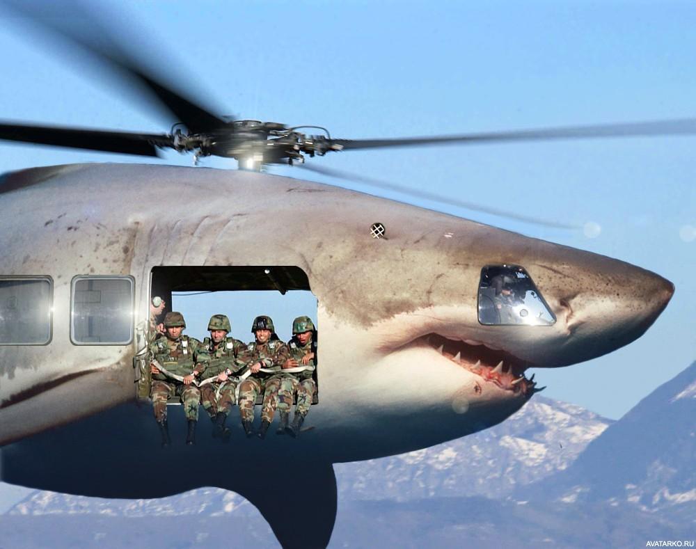 Без ума, смешные картинки вертолета