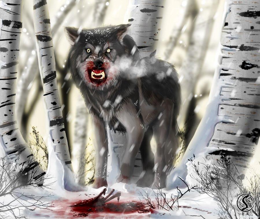 волк уходит от погони картинки тур агенство