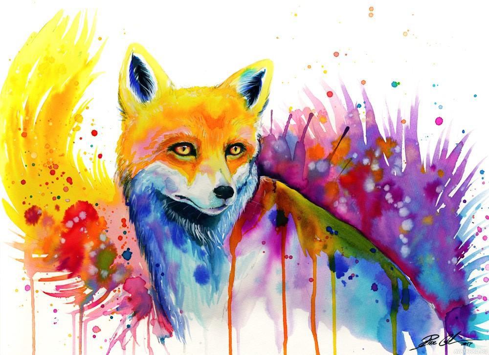 Молодой женщине, крутые рисунки про животных