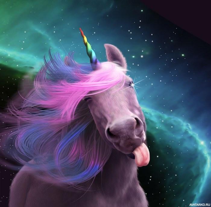 Просто красивые картинки на аватарку единорогов