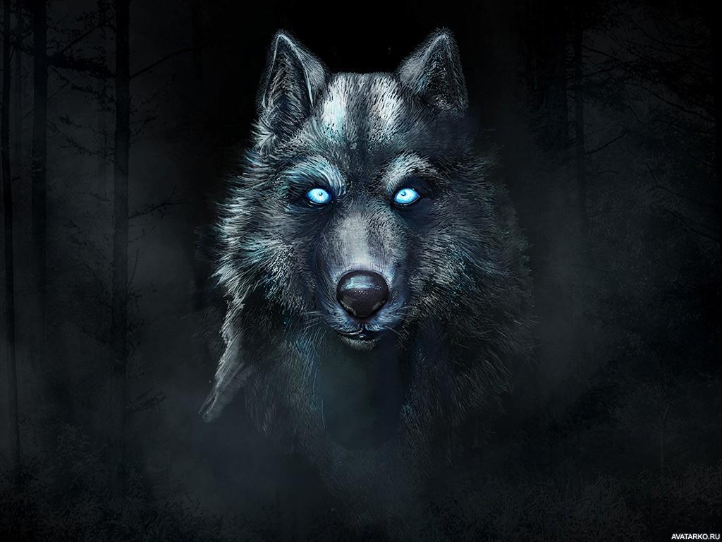 Звук волк воет скачать