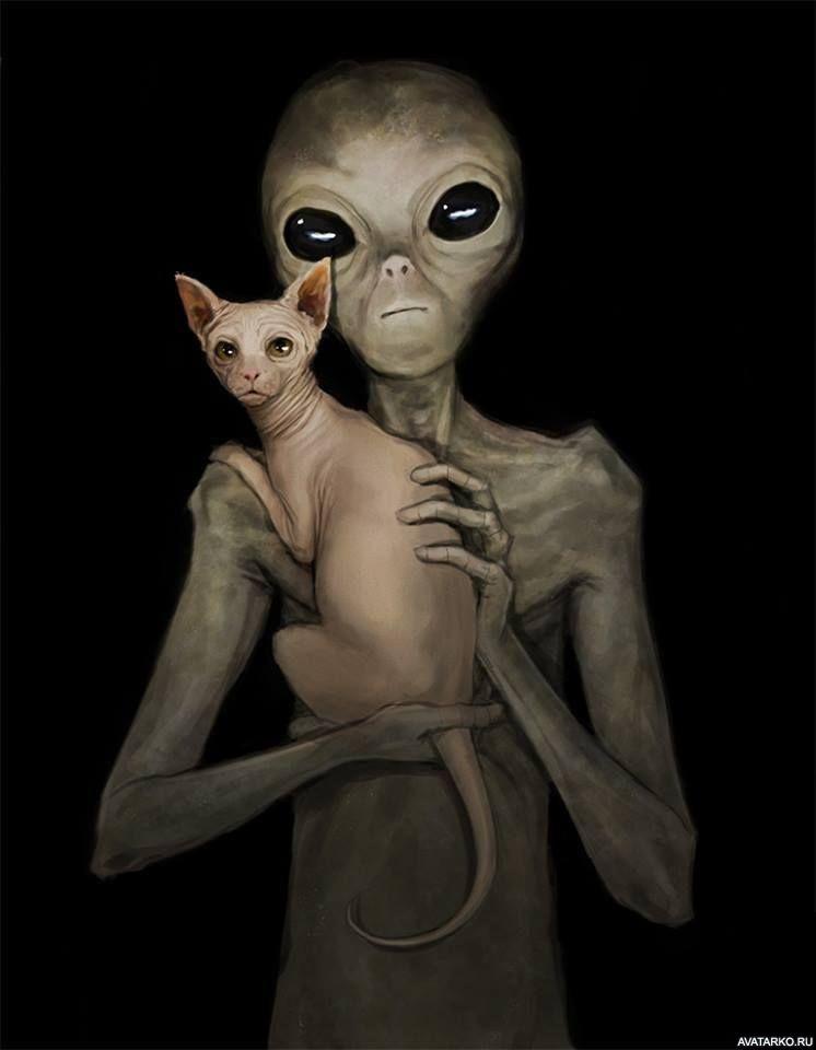 Картинки пришельцев смешные, своими руками маме