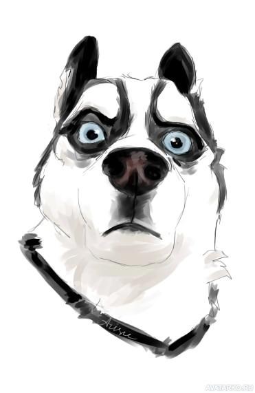 Юмором, крутые собаки рисунки