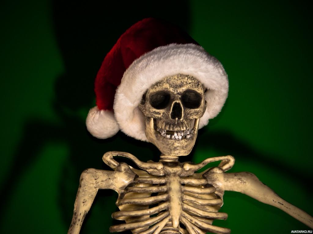 предлагают фото на аву красный скелет все