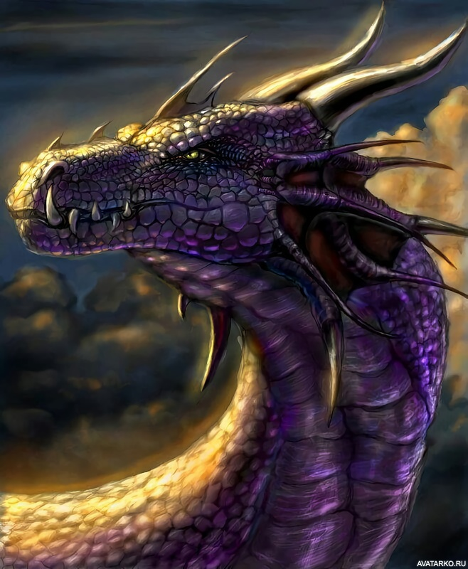 картинки про драконов на аву предлагаем готовые