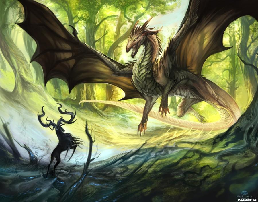 Картинки кпд драконы беззубик эритема