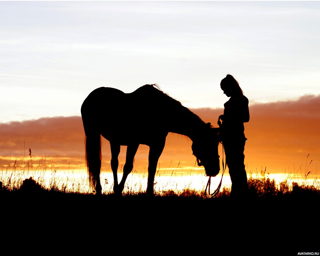 Девушка с лошадью на аву 2