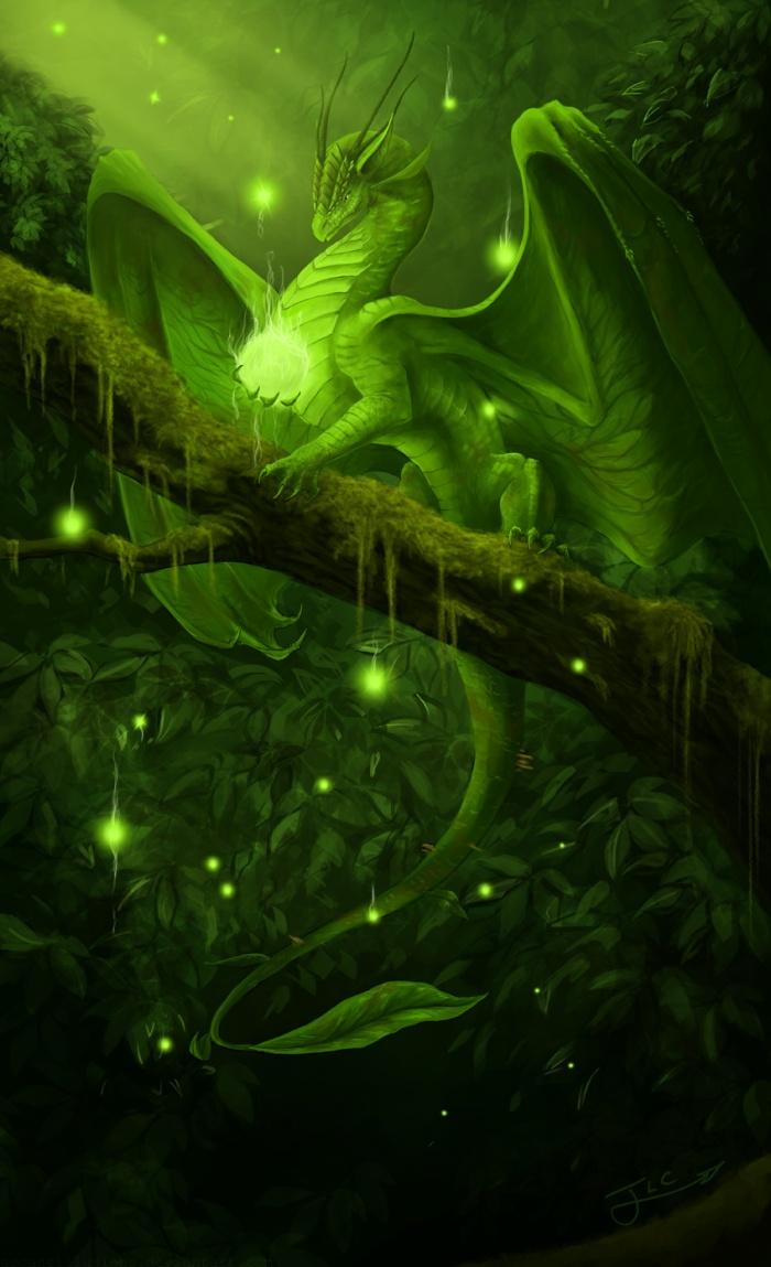 дисковой картинки с драконами на природе опубликовала фотографию, которой