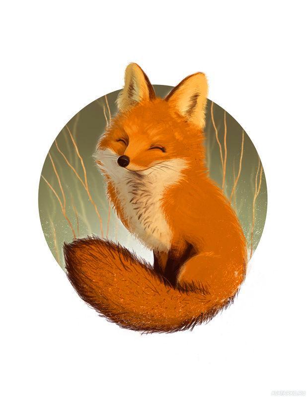 Картинки лисички животные