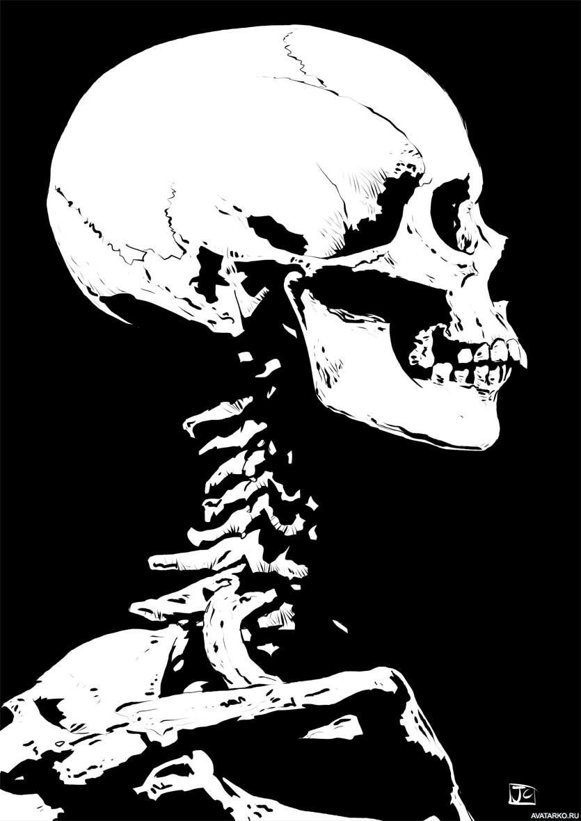 Арты скелеты черно белые