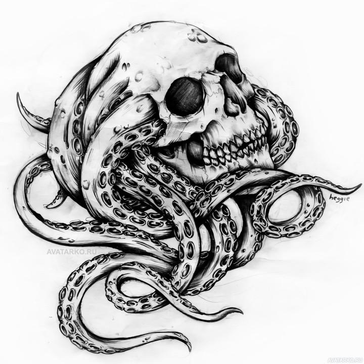 картинки змей карандашом в черепе невежинская это сорт