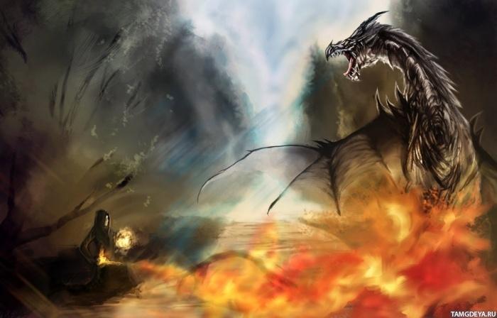 картинка фото дракон драконы