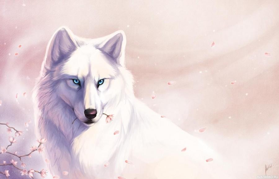 волк с белыми глазами картинки